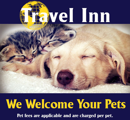 Travel Inn Is Pet Friendly